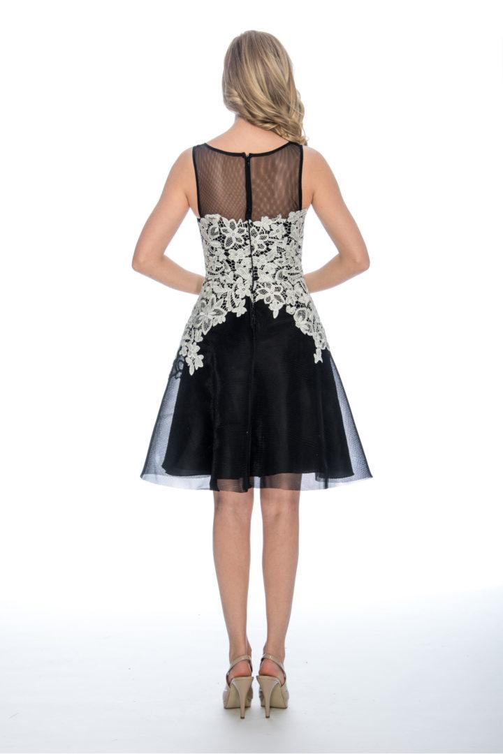 A line, lace, short dress